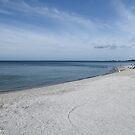 Beach Day  by John  Kapusta