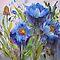 All Glorious Gardens - Blue in the Garden