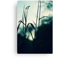 grassland - eight Canvas Print