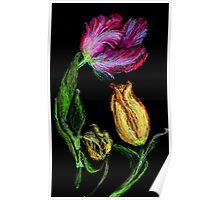 Tulpen,rot und gelb auf schwarzem Grund Poster