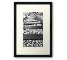 The Train Way... Framed Print