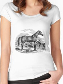 Vintage Arabian Horse Illustration Retro 1800s Black and White Equestrian Image Women's Fitted Scoop T-Shirt