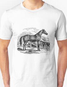 Vintage Arabian Horse Illustration Retro 1800s Black and White Equestrian Image Unisex T-Shirt