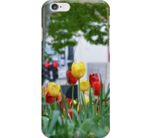 Spring Tulips in Georgetown iPhone Case/Skin
