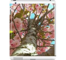 Springtime Cherry Blossoms in DC iPad Case/Skin