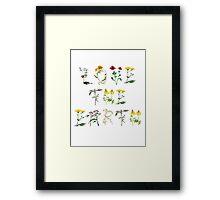 Love The Earth Framed Print