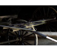 Buggy In Hiding Photographic Print