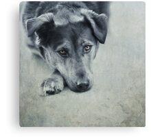 Luna Portrait Canvas Print