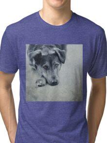 Luna Portrait Tri-blend T-Shirt