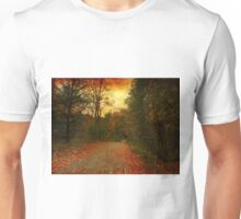 Autumn in Toronto Unisex T-Shirt