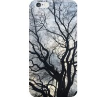 Silhouetted Tree iPhone Case/Skin