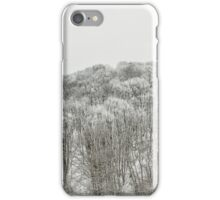 Forest covered with snow iPhone Case/Skin