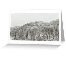 Forest covered with snow Greeting Card