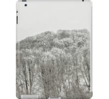 Forest covered with snow iPad Case/Skin