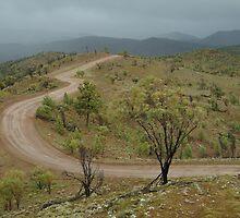 Joe Mortelliti Gallery - Razor Back View, Willow Springs Station, Flinders Ranges, South Australia by thisisaustralia