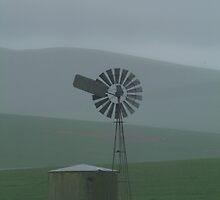 Joe Mortelliti Gallery - Rainstorm, southern Flinders Ranges, South Australia.  by thisisaustralia