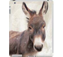 Wetnose Donkey Colour iPad Case/Skin