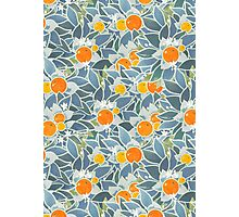 oranges and leaves vintage pattern Photographic Print