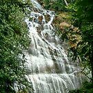 Bridal Veil Falls, BC, Canada by AnnDixon