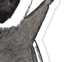 Just keep reaching.  Raccoon & Raspberry Sticker