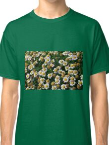 White flowers and yellow center, natural background. Classic T-Shirt