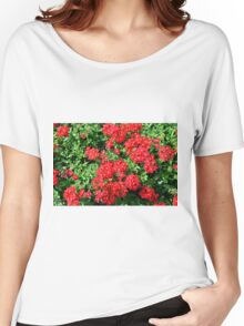 Bush of red flowers and green leaves. Women's Relaxed Fit T-Shirt