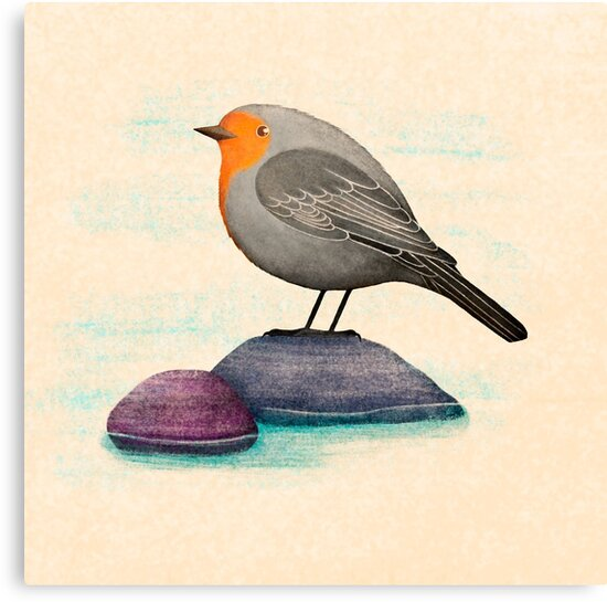 a robin bird on a rock by Maria Khersonets