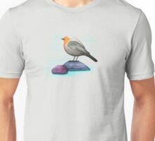 a robin bird on a rock T-Shirt