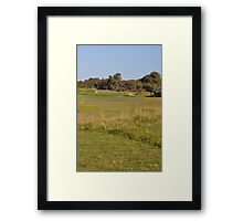Moonah Links Series #91 Framed Print