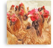 Wetnose Chickens Colour Canvas Print