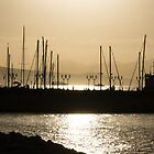 A Necklace of Old World Lights - Golden Morning at Naples Marina  by Georgia Mizuleva