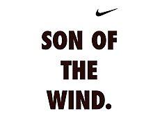 Son of the Wind - Hanuman Photographic Print