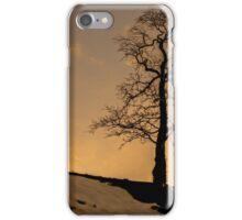 Alston - Lone Tree Sunset iPhone Case/Skin