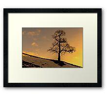 Alston - Lone Tree Sunset Framed Print