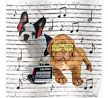 Musical Notes French Bulldog & Dogue De Bordeaux Poster
