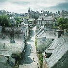 Dinan's Rooftops by DebraCox