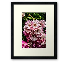 Colourful Flowers Framed Print
