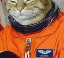 Astronaut Cat Kitten Funny Space Sticker