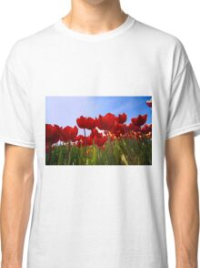 ...spring.. time to work with your wide angle lens...  Classic T-Shirt
