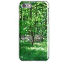 A Summer's Day in Ilkley iPhone Case/Skin