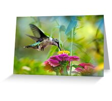 Sweet Hummingbird Greeting Card