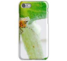 Assassin Bug iPhone Case/Skin