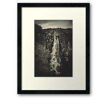 Dog´s Fall Framed Print