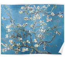 Vincent van Gogh - Branches with Almond Blossom Poster