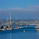 San Diego Harbour by Heather Friedman