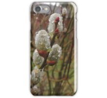 Pussy Willow with Raindrops iPhone Case/Skin