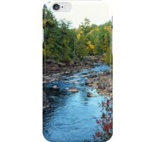 Black River Michigan iPhone Case/Skin