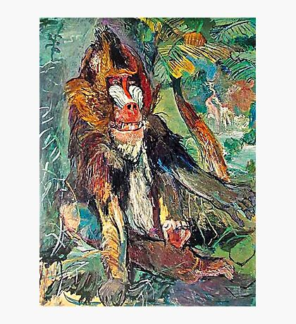 The Mandrill Photographic Print