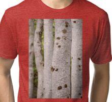 Gruinard Beeches Tri-blend T-Shirt