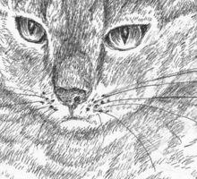 Wistful cat Sticker
